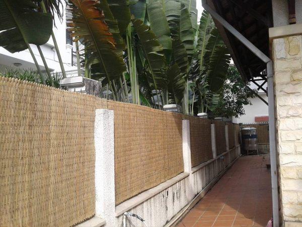 Xưởng sản xuất tấm cốt tre dùng trong xây dựng và trang trí